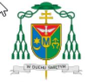 Zarządzenie odnośnie do sprawowania posługi duszpasterskiej i liturgicznej z dnia 28.05.2020